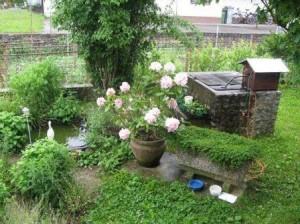 vrt-ekolosko-vrtnarjenje